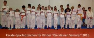 Sportabzeichen 2015